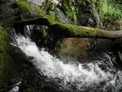 DSCN0569仁世宇奥の滝
